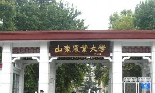 山东农业大学七氟丙烷灭火项目